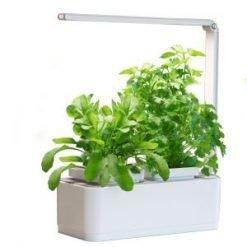 Hydroponic Indoor Herb Garden