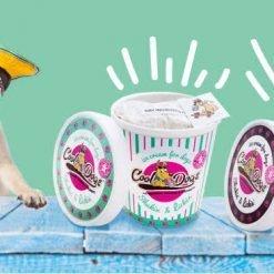 Cool Dogs Shakin' & Lickin' Ice-cream