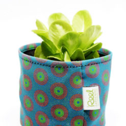 Grow Pot Turquoise and Lime